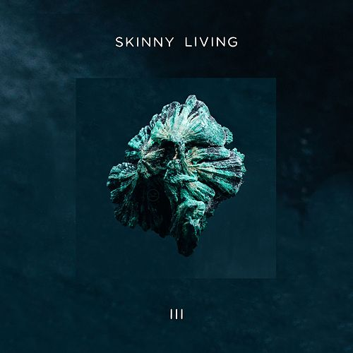 3 by Skinny Living