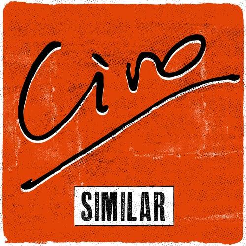 Similar de Ciro Y Los Persas