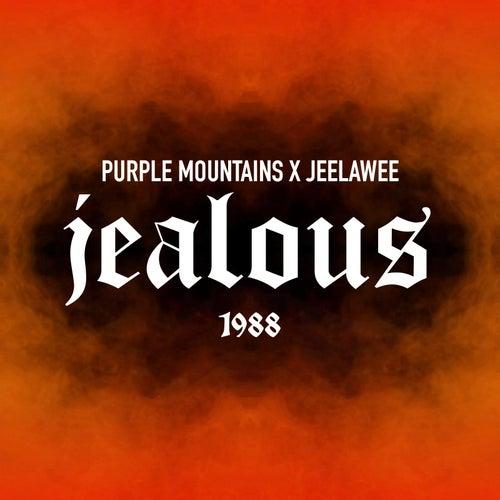 Jealous de Purple Mountains