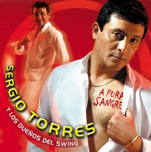 A Pura Sangre by Sergio Torres y Los Dueños Del Swing