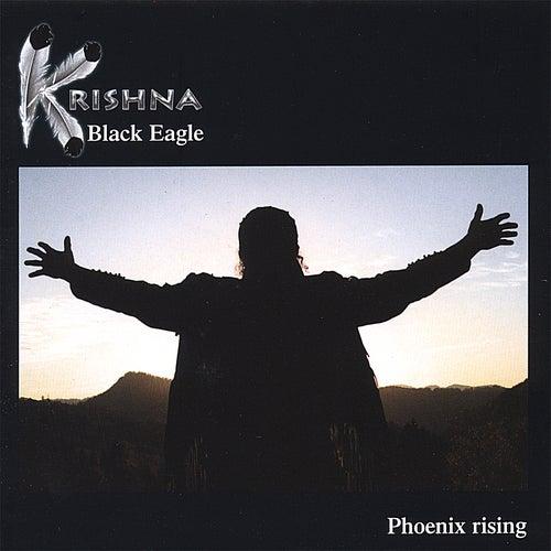 Phoenix Rising de Krishna Black Eagle