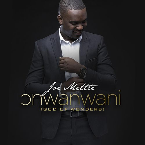 Onwanwani by Joe Mettle