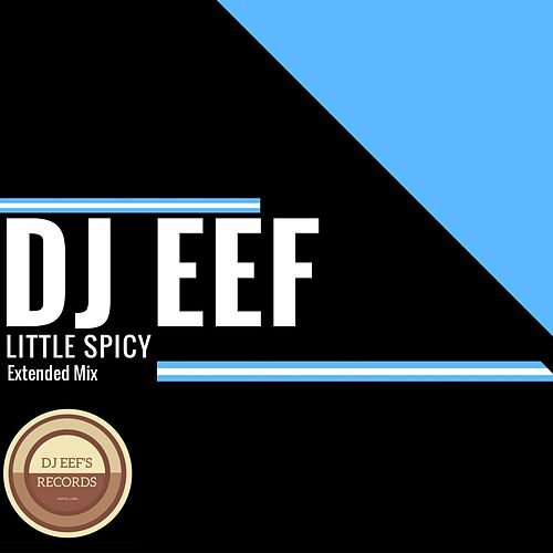 Little Spicy (Extended Mix) de DJ Eef