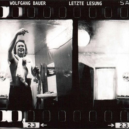 Letzte Lesung by Wolfgang Bauer