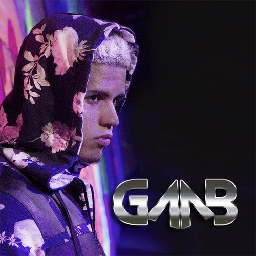 Gaab by GAAB