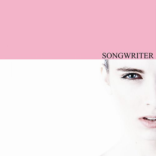 Songwriter de Various Artists