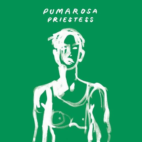 Priestess (Shura Remix) by Pumarosa