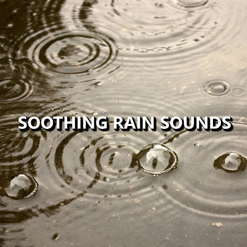 Soothing Rain Sounds by Rain Sounds Nature Collection