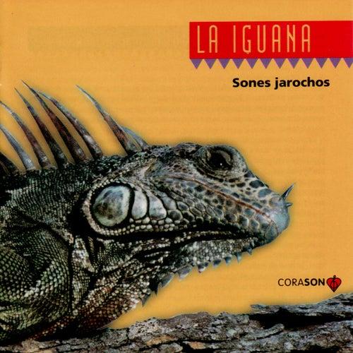 La La Iguana: Sones Jarochos von Sones Jarochos