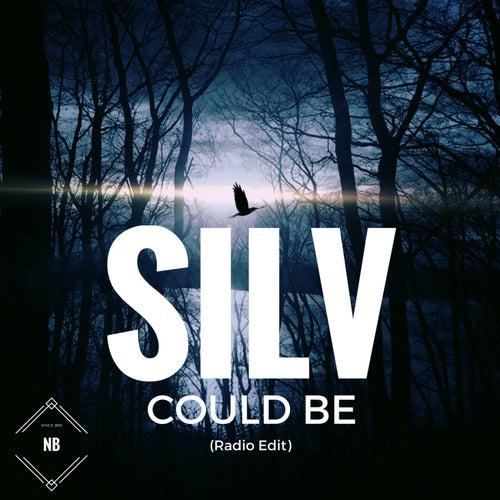 Could Be (Radio Edit) di Silv