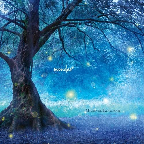 Wonder by Michael Logozar