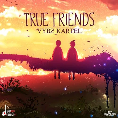 True Friends - Single by VYBZ Kartel