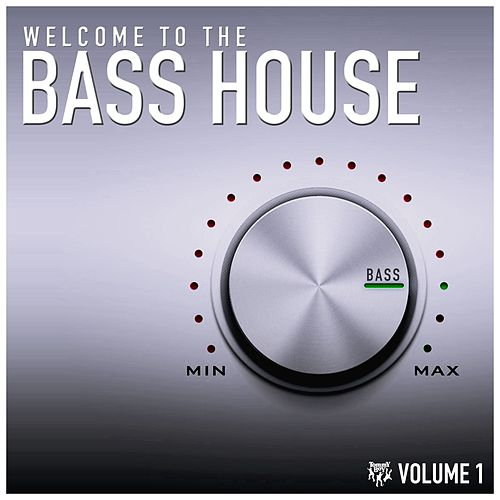 Welcome to the Bass House by Various Artists