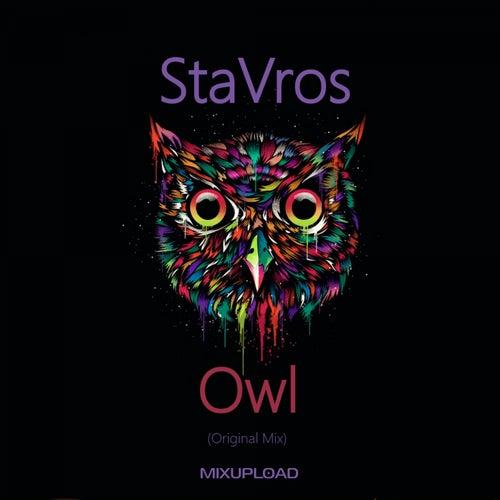 Owl by Stavros
