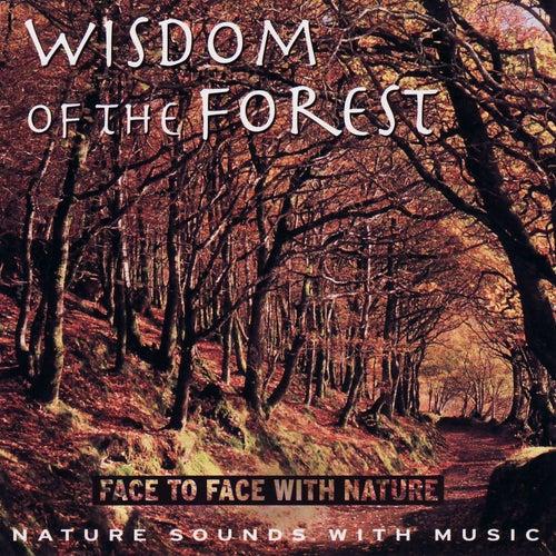 Wisdom of the Forest de Medwyn Goodall