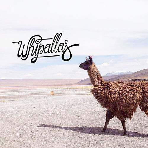 Whipallas by Whipallas