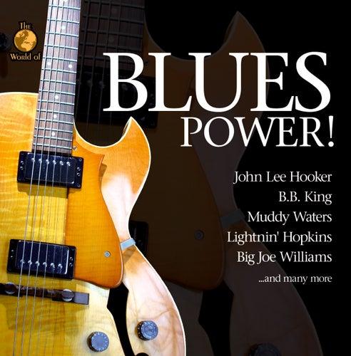 Blues Power de Various Artists