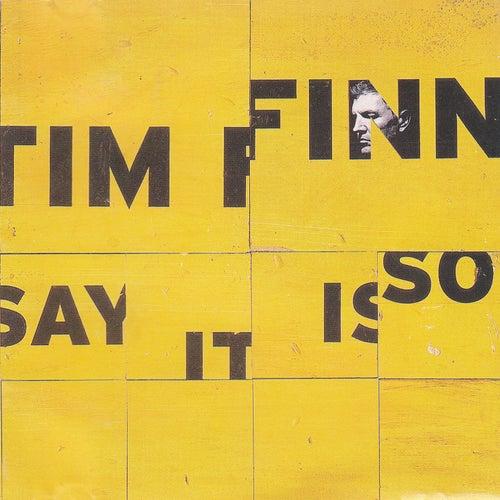 Say It Is So von Tim Finn