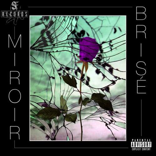 Miroir brisé de Soja