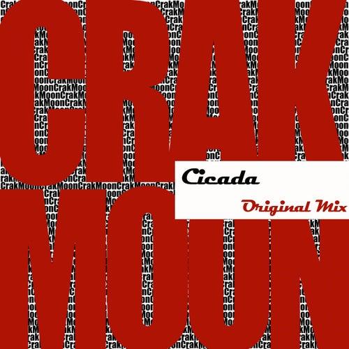 Cicada by CrakMoon