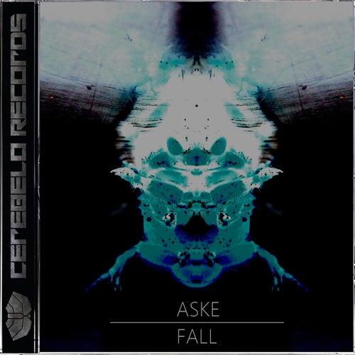 Fall by Aske
