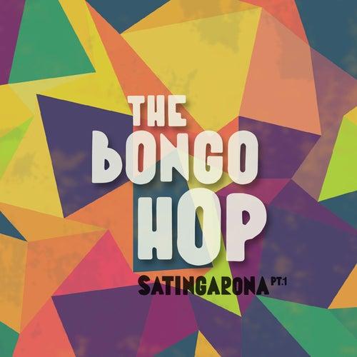 Satingarona, Vol. 1 de The Bongo Hop
