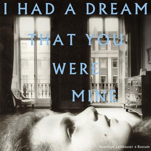 I Had a Dream That You Were Mine von Hamilton Leithauser