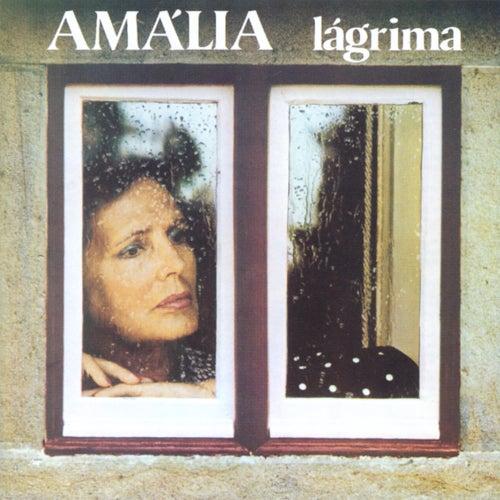 Lágrima de Amalia Rodrigues