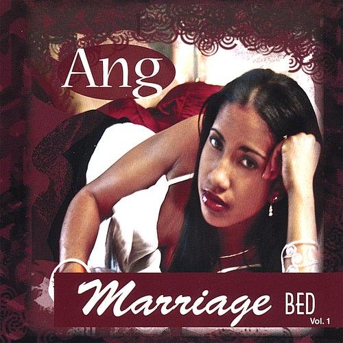 Marriage Bed Vol 1 de Ang