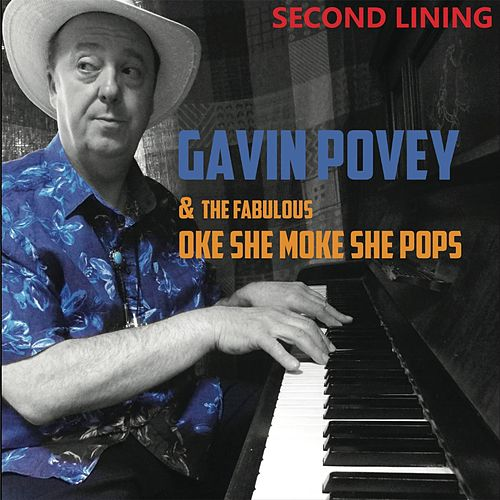 Second Lining by Gavin Povey