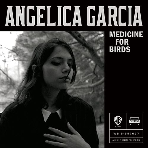 Medicine for Birds de Angelica Garcia