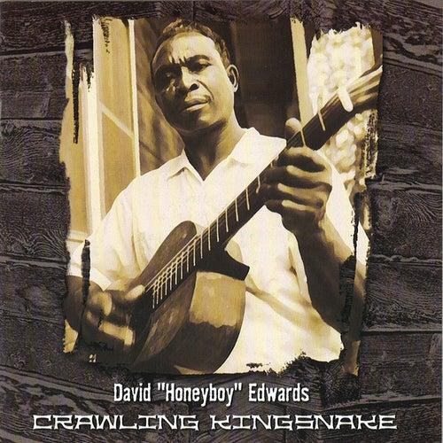 Crawling Kingsnake de David