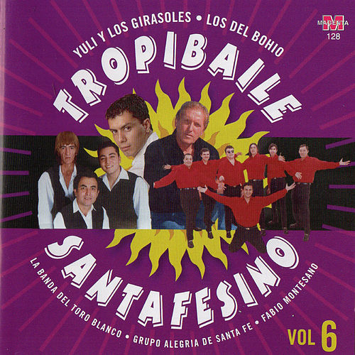 Tropibaile Santafesino, Vol. 6 de Various Artists