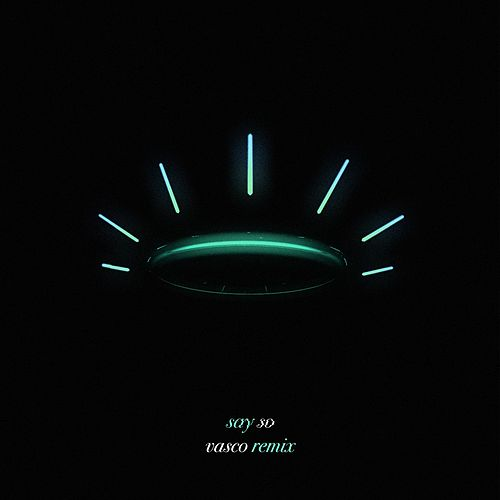 Say So (Vasco Remix) by Terror Jr