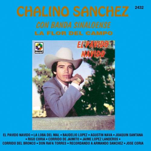 La Flor Del Campo: El Pávido Návido de Chalino Sanchez