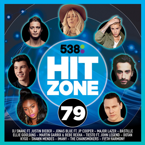 538 Hitzone 79 van Various Artists