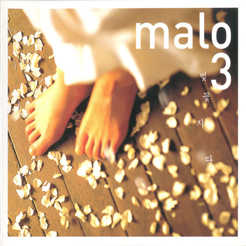 Cherry Blossoms Are Gone by Malo