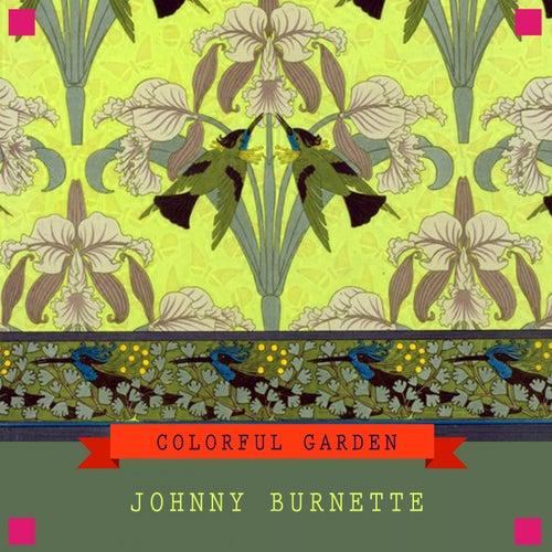 Colorful Garden by Johnny Burnette