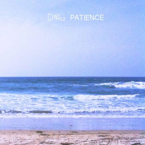 Patience de D Nilsz