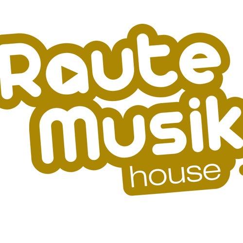 RauteMusik House Vol. 1 von Various Artists