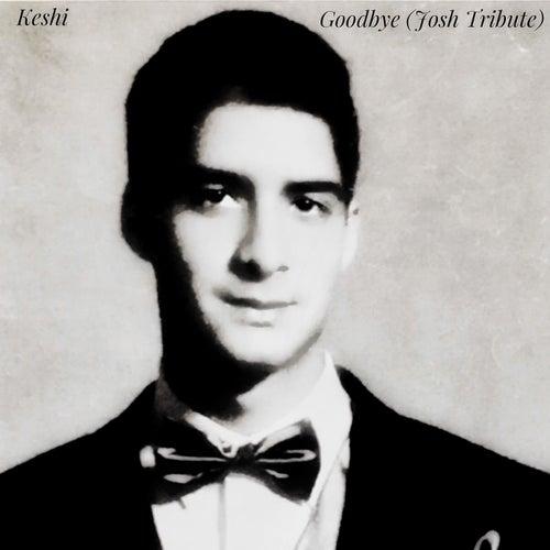 Goodbye (Josh Tribute) - Single by Keshi