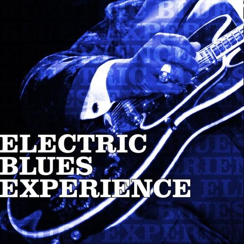 Electric Blues Experience de Various Artists