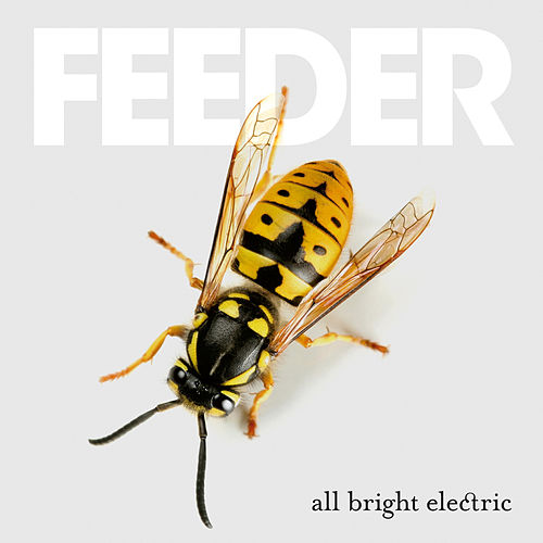 All Bright Electric (Deluxe) de Feeder