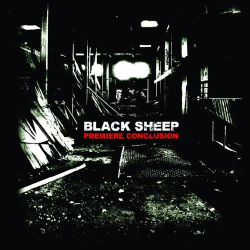Première conclusion de Black Sheep