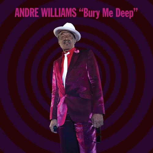 Bury Me Deep de Andre Williams