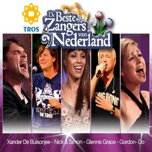 De Beste Zangers van Nederland de Various Artists