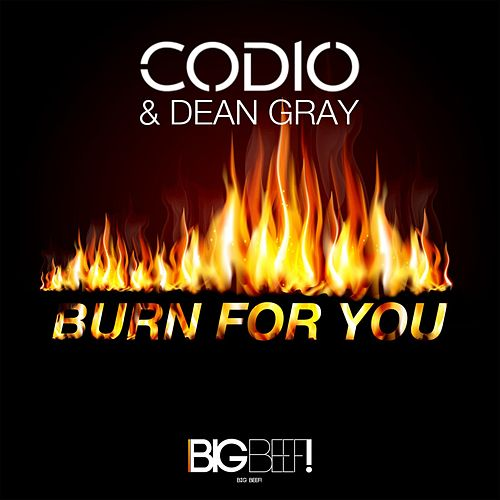 Burn for You von Codio