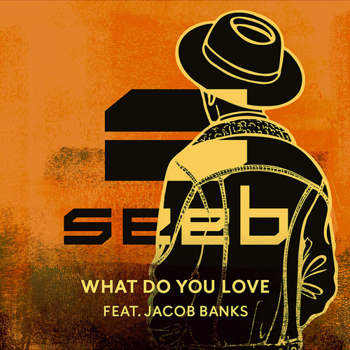 What Do You Love by seeb