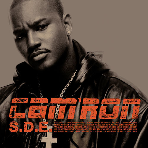 S.D.E. by Cam'ron