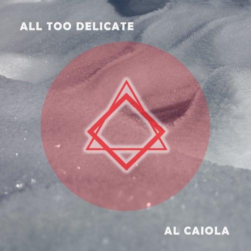 All Too Delicate by Al Caiola